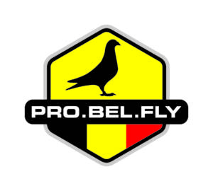 Probelfly